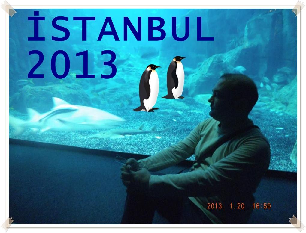 İstanbul 2013