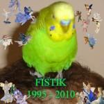 FISTIK